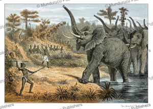 hunting elephants in tanzania, from the novel kalulu by henry stanley, p.j. andriesen, 1875