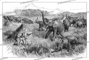 Elephants in the Shire Valley, Malawi, J.D. Cooper, 1887 | Photos and Images | Digital Art