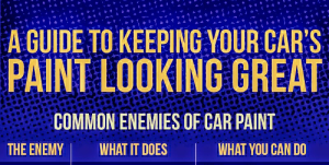 Car care products and car wash guide | eBooks | Automotive