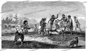 hottentots collecting eggs and hunting game, david livingstone, 1857