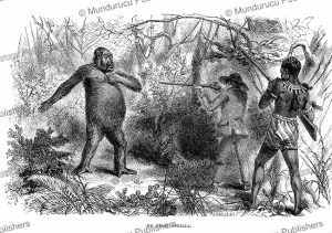 paul du chaillu shooting his first gorilla, equatorial africa, e.v. whitney, 1861