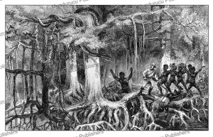 Crossing a mangrove-swamp in Equatorial Africa, Paul du Chaillu, 1861 | Photos and Images | Digital Art