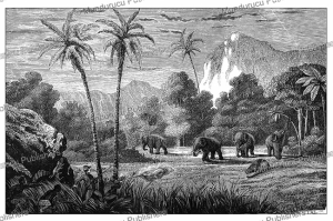 Elephant hunting in Ceylon (Sri Lanka), L'Illustration, 1852 | Photos and Images | Digital Art