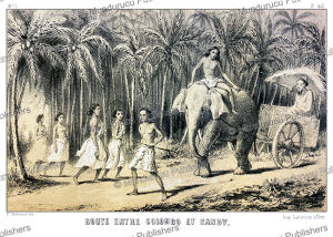 Road between Colombo and Kandy, Ceylon (Sri Lanka), Alexis Soltykoff, 1851 | Photos and Images | Digital Art