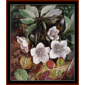 christmas roses - a.d. lucas cross stitch pattern by cross stitch collectibles
