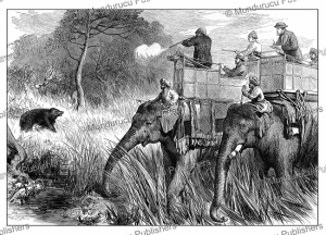 the prince of wales in nepal terai shooting a bear, india, the london illustrated news, 1876