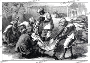Skinning a tiger for the Prince of Wales, India, The London Illustrated News, 1876 | Photos and Images | Digital Art