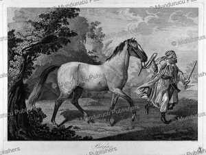White horse led by an Arab man, M. Maas, 1850 | Photos and Images | Digital Art