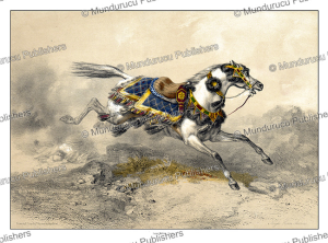 Negedi horse, Arabia, d'Avennes Prisse, 1851 | Photos and Images | Digital Art