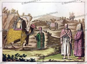 Sacred camel, Angelo Biasioli, 1817 | Photos and Images | Digital Art