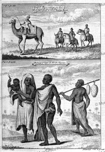 Arabs & Moors riding on their camels, oxen & horses, John Green, 1750 | Photos and Images | Digital Art