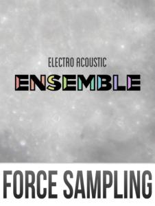 electro acoustic ensemble