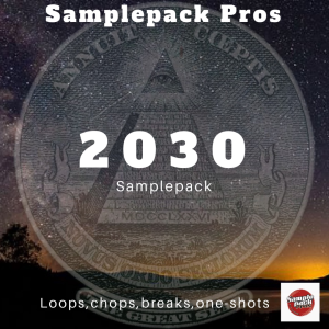 2030 Sample Pack | Music | Soundbanks