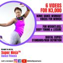 Super Ninja Dance Fitness Bundle | Movies and Videos | Fitness