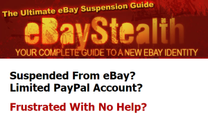 ebay stealth your guide to succes