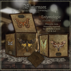 entymologie: printable gift box set