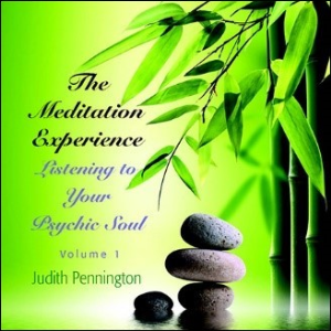 the meditation experience: listening to your psychic soul, volume 1