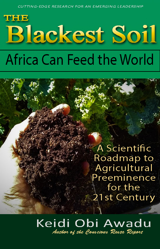 First Additional product image for - THE BLACKEST SOIL: Africa Can Feed the World eBook