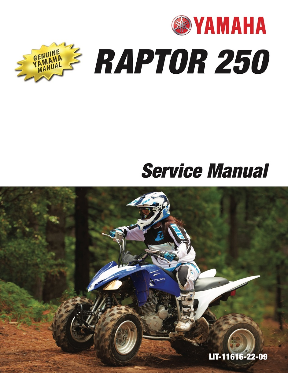 Yamaha Atv Raptor 250 2008