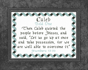 Name Blessings - Caleb 6 | Crafting | Cross-Stitch | Other