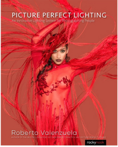 Picture Perfect Lighting   eBooks   Arts and Crafts
