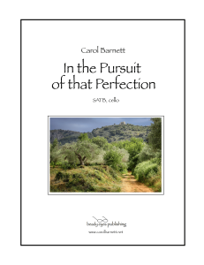 In the Pursuit of that Perfection | Music | Classical