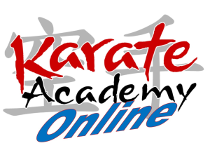 beginning karate lesson