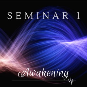 Seminar 1: Awakening | Audio Books | Meditation