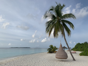 Maldives Beach | Photos and Images | Travel