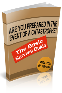 The Basic Survival Guide | eBooks | Outdoors and Nature