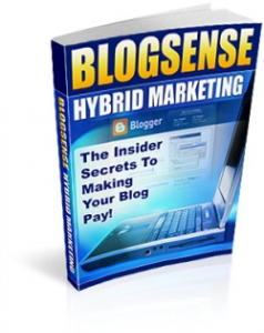 blog sense hybrid marketing