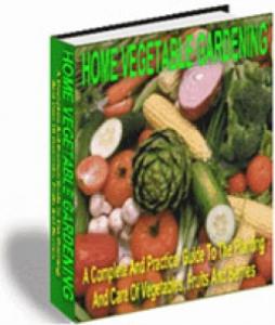 home vegetable gardening
