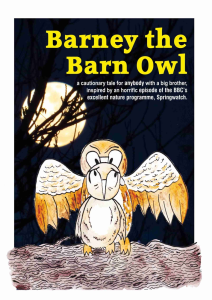 barney the barn owl card