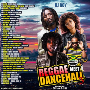 dj roy presents reggae meets dancehall mix vol.3