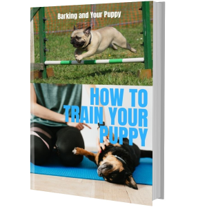 how to train your puppy e-book pdf plr mrr