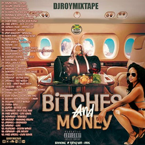 dj roy presents bitches and money dancehall mix