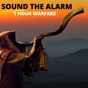 sound the alarm - 1 hour warfare