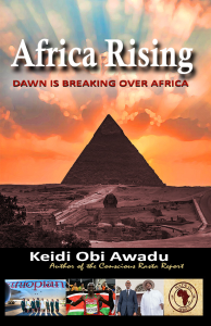 africa rising: a new dawn over africa