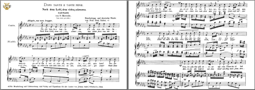 First Additional product image for - Dopo tante e tante pene (Cantata), High Voice in B-Flat Minor, B.Marcello. Caecilia, Ed. André. Tablet Sheet Music (Landscape)
