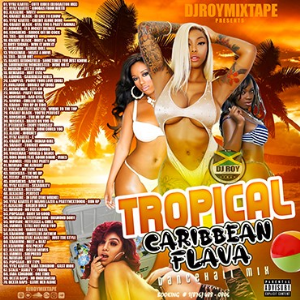 dj roy presents tropical caribbean flava dancehall mixtape