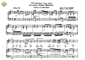 ritornerai fra poco, medium voice in e minor, j. a hasse. caecilia, ed. andré. tablet sheet music (a5 landscape)