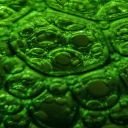 A bubbles in a bottle   Photos and Images   Abstract