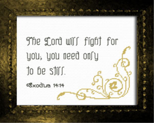 First Additional product image for - The Lord Will Fight For You