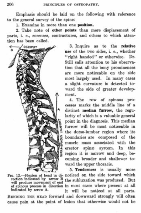 First Additional product image for - A Text Book of The Principles of Osteopathy