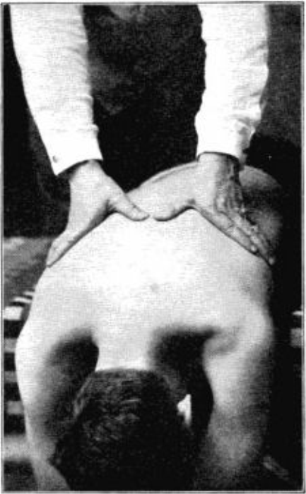 Fourth Additional product image for - Practice of Osteopathy