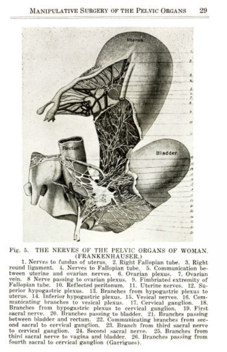 First Additional product image for - Intra-Pelvic Technic or Manipulative Surgery of The Pelvic Organs
