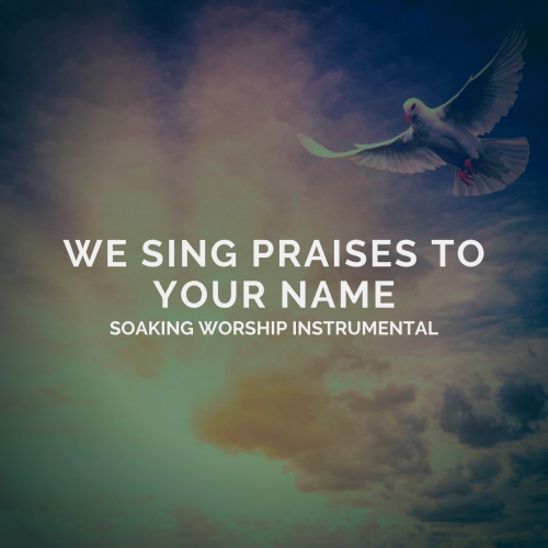 First Additional product image for - We Sing Praises To Your Name - 1 hour Worship