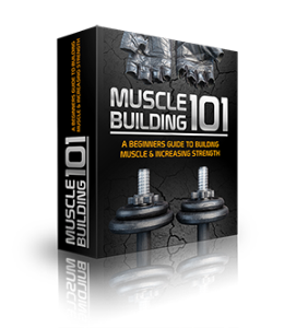 how to build your muscles