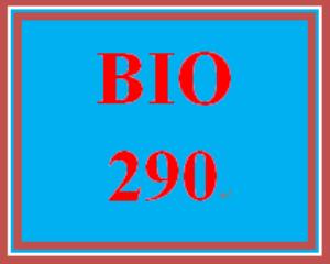 BIO 290 All Discussions | eBooks | Education