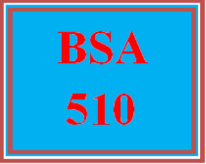 BSA 510 All Discussions | eBooks | Education